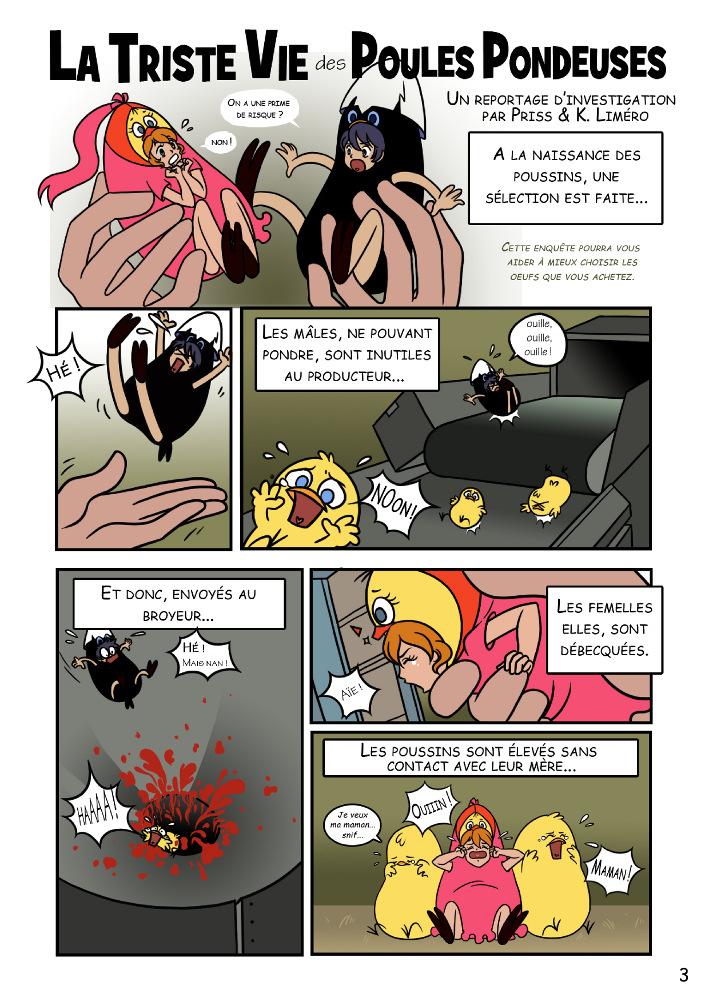 Dessins 2012 manga l214 par aj fraggle visuels l214 for Duree de vie des poules pondeuses