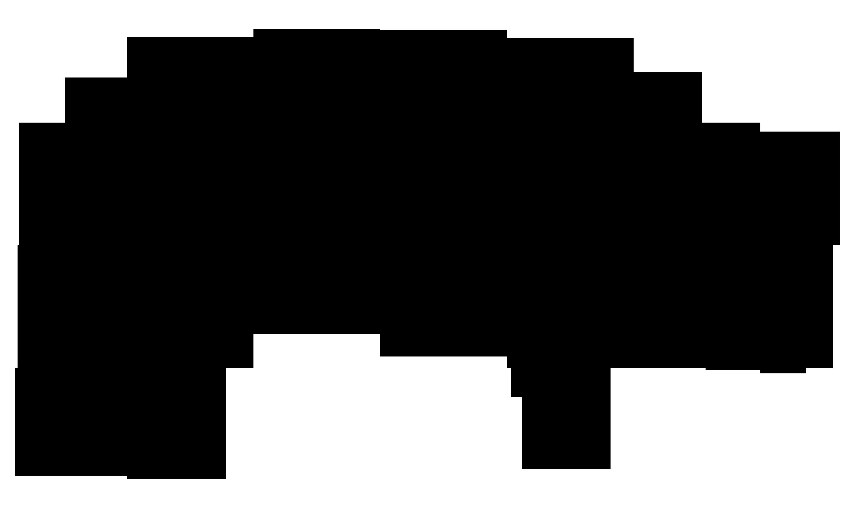 cochon-2.png
