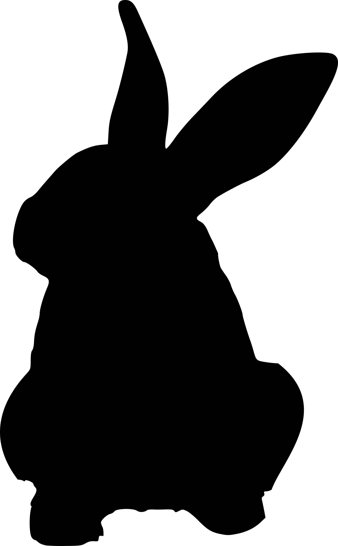 Animaux Silhouettes Visuels L214