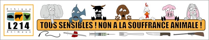 Tous sensibles ! Non à la souffrance animale !
