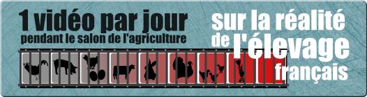 Une vidéo par jour pour montrer l'envers du décor du salon de l'agriculture