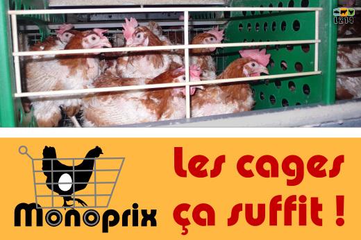 http://visuels.l214.com/bannieres/poules-pondeuses/monoprix/Monoprix.jpg