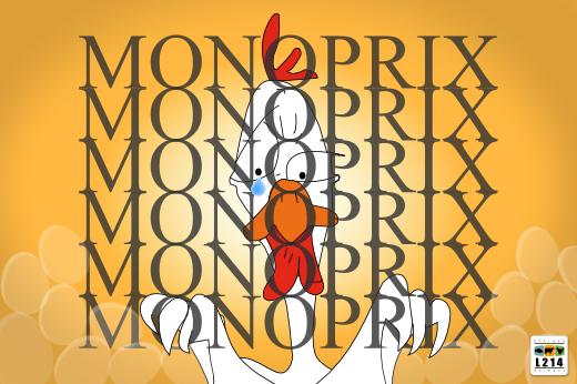 Monoprix, les cages ça suffit !