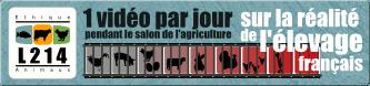http://visuels.l214.com/bannieres/salon-agriculture/2011/banniere-salon-agriculture-2011-hori-bleu-333x78.png