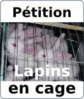 Pétition contre l'élevage des lapins en cages