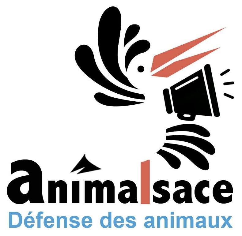 Logo Animalsace