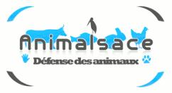 Animalsace, défense des animaux