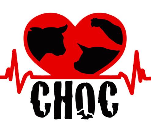 Logo Asso Choc