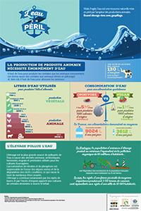 Ressources en eau et consommation de viande