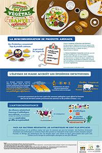 Production, consommation de viande et santé : maladies, antibiorésistance