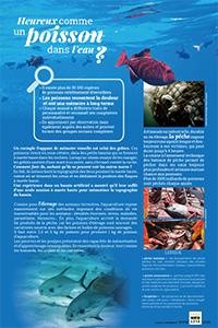 Poissons dans les mers et aquaculture