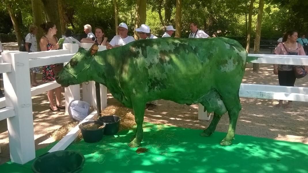 photo de la vache peint en vert