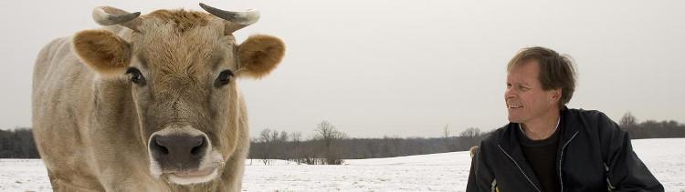 Bannière Ce que la science nous dit des sentiments des animaux de ferme