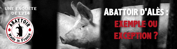Bannière Abattoir d'Alès : exemple ou exception ?