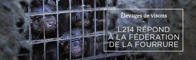 Bannière L214 répond à la Fédération Française des Métiers de la Fourrure