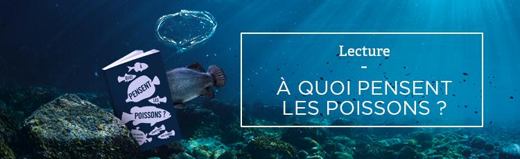 Bannière À quoi pensent les poissons ?