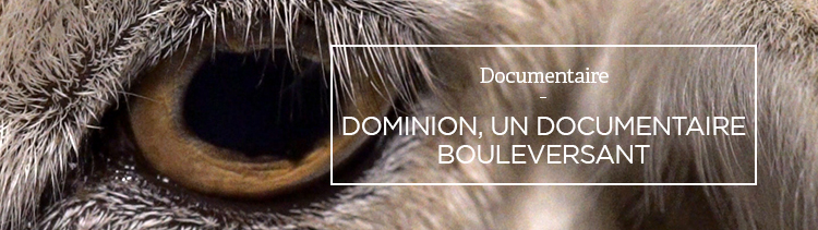 Bannière Dominion, un documentaire bouleversant