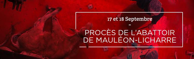 Bannière Enquête à l'abattoir de Mauléon-Licharre : le procès s'ouvre le 17 septembre à Pau