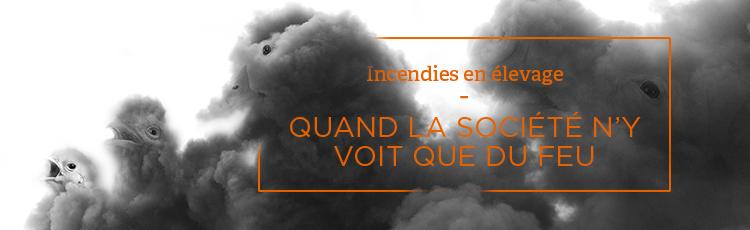 Bannière Plus de 162 000 animaux brûlés vifs ou asphyxiés en 2018 dans des incendies d'élevage en France