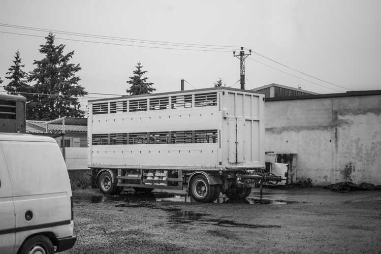 Camion de transport (c) SC