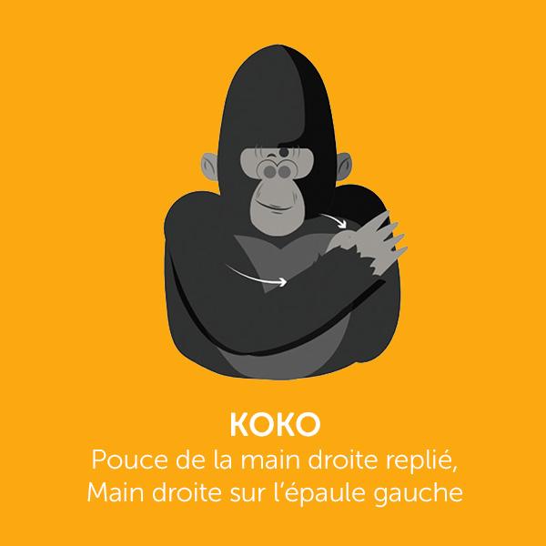 Parle comme Koko : KOKO