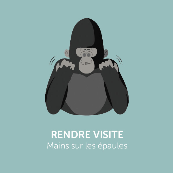 Parle comme Koko : RENDRE VISITE