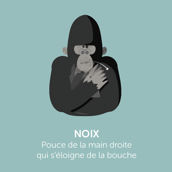 Parle comme Koko : NOIX