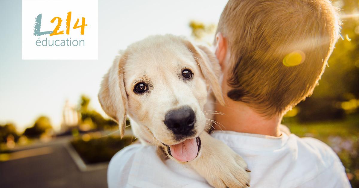10 bonnes nouvelles pour les animaux en 2018 !