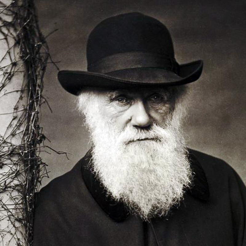 Charles Darwin en 1880