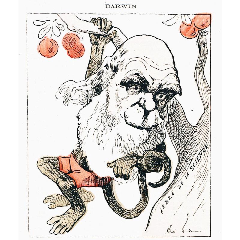 Darwin caricaturé en singe dans 'La petite lune'