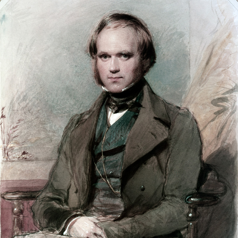 Darwin vers 1830 / Portrait par G. Richmond