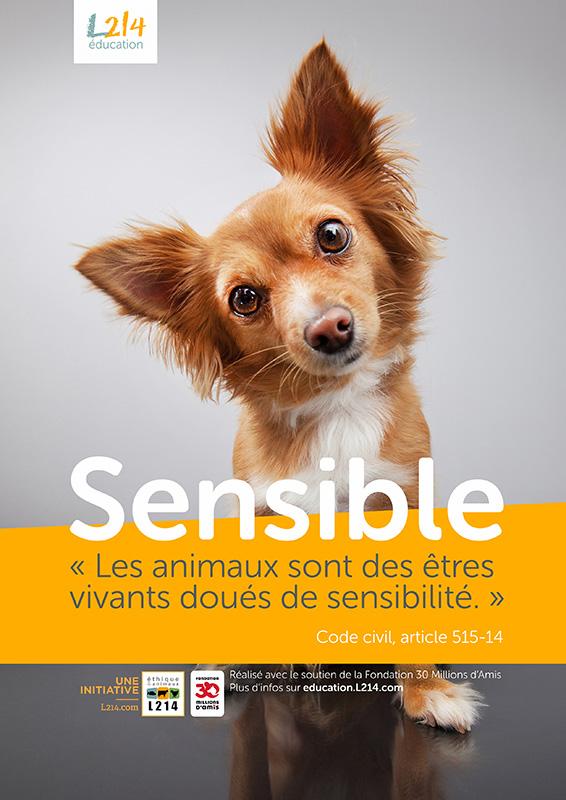 Poster « Sensible » n°1