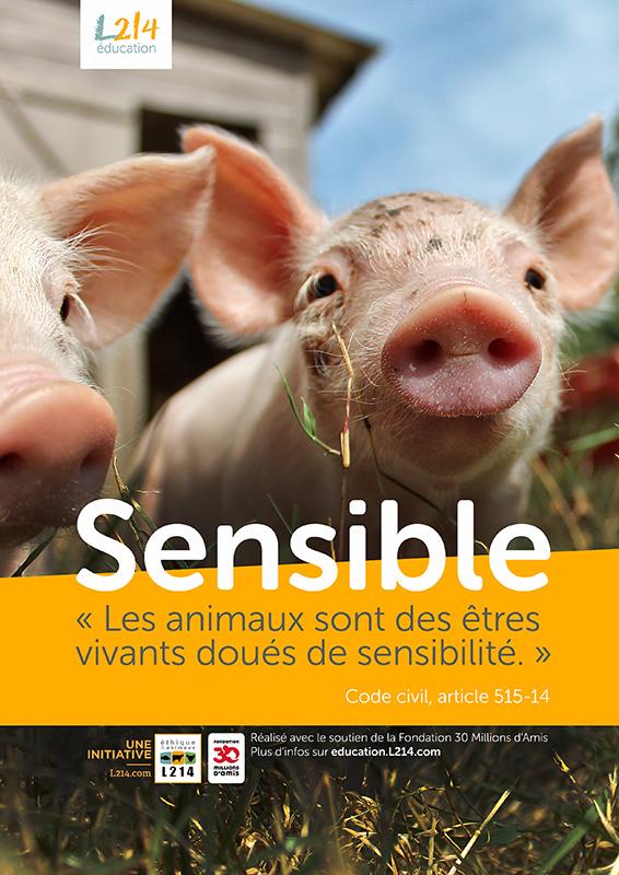 Poster « Sensible » n°2