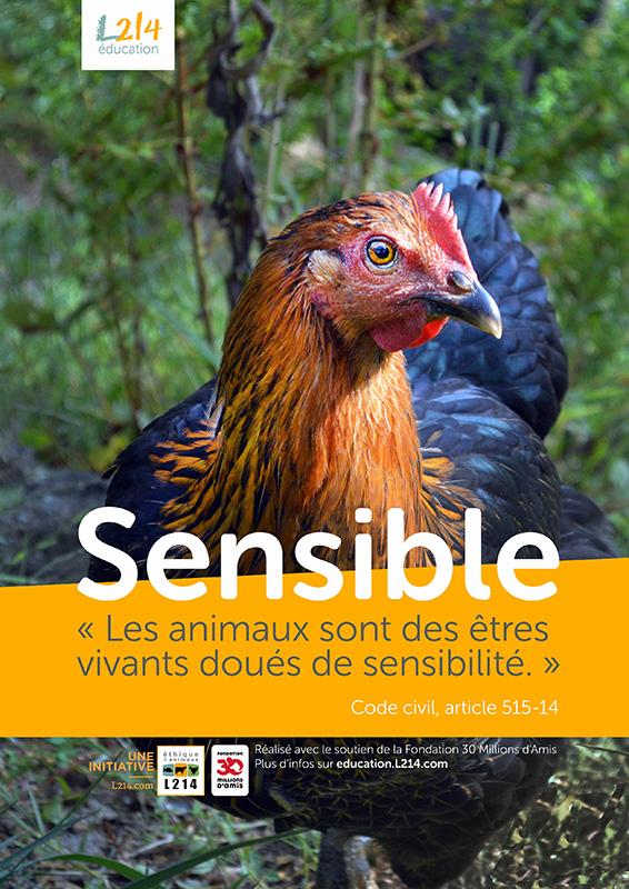Poster « Sensible » n°3