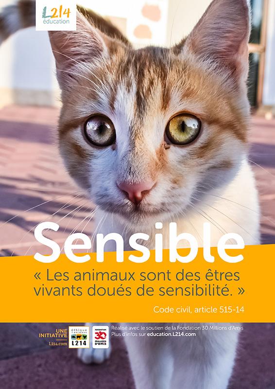 Poster « Sensible » n°4