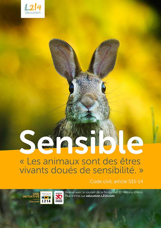 Poster « Sensible » n°5