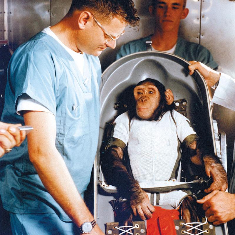 Ham sera envoyé dans l'espace, et en reviendra vivant, en 1961 (USA)