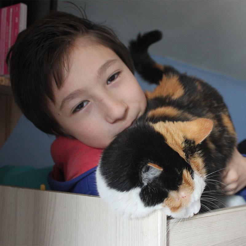 Les familles d'accueil s'occupent des animaux jusqu'à leur adoption.