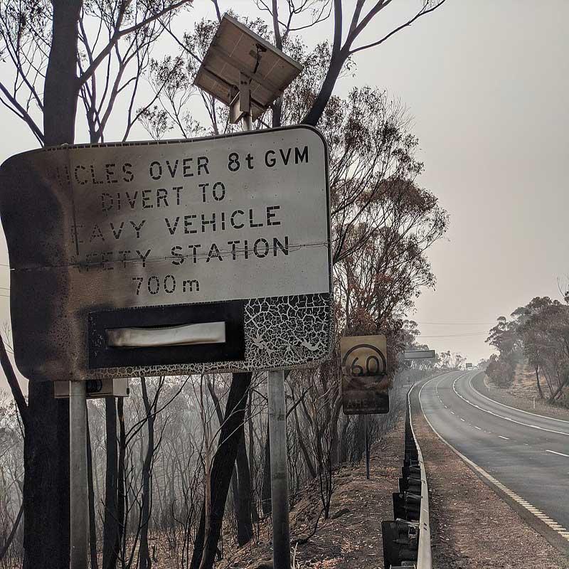 Selon le WWF, ces feux de forêt auraient tué 1,25 milliard d'animaux : un bilan catastrophique.