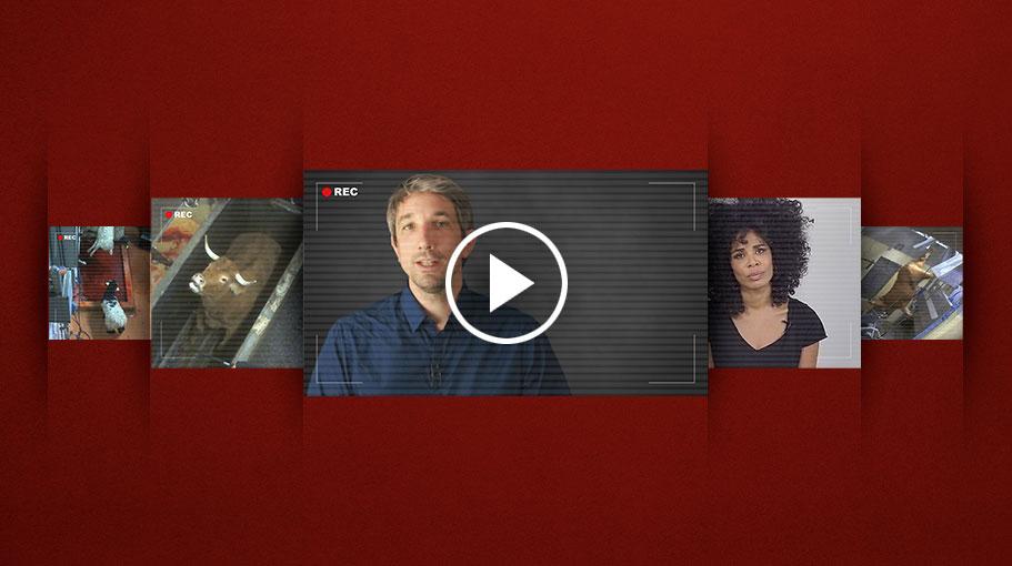 Image vidéos d'enquêtes de L214