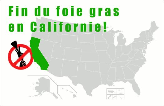 Fin du foie gras et du gavage en Californie