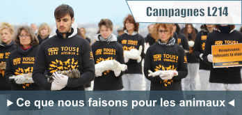 Les campagnes L214