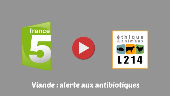 Interview de L214 dans un reportage diffusé sur France 5