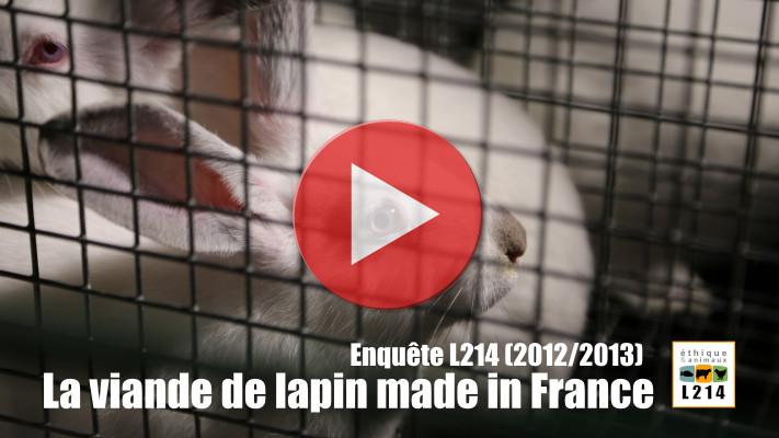 Vidéo de l'enquête L214 sur l'élevage des lapins en France (2012/2013)