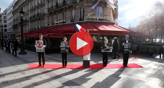 Clip du happening à Paris pour la Journée mondiale contre le foie gras