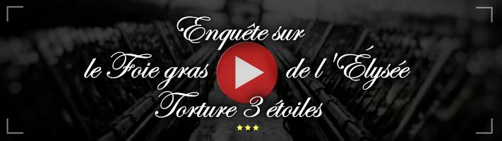 Enquête sur le foie gras de l'Élysée - Torture 3 étoiles