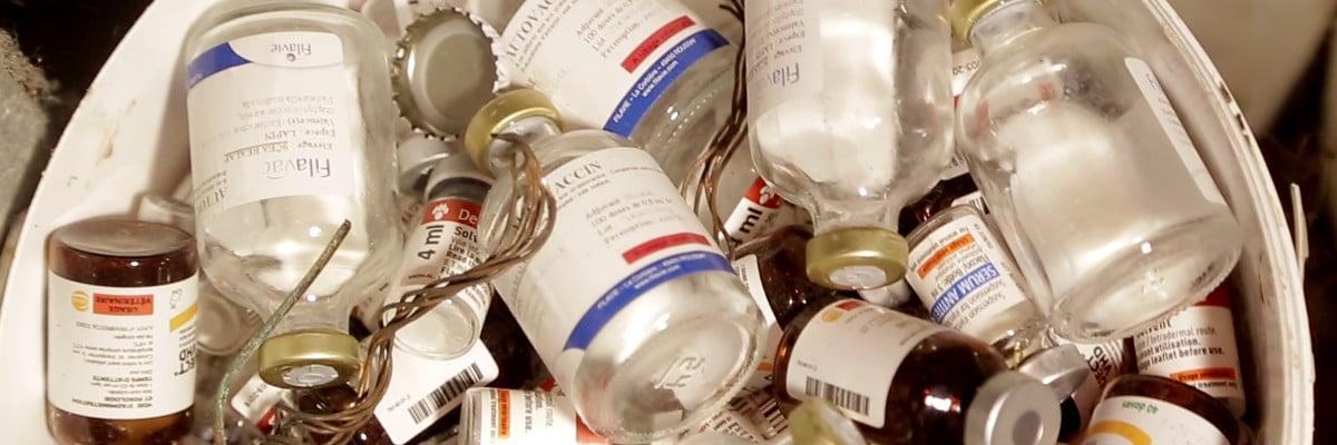 Médicaments : hormones, antibiotiques, vaccins
