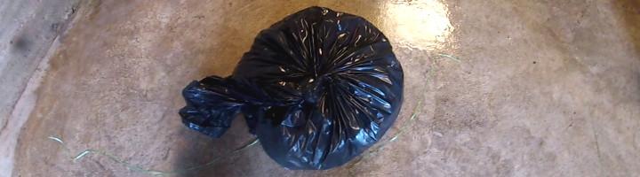 Photo de poussins agonisant dans un sac-poubelle