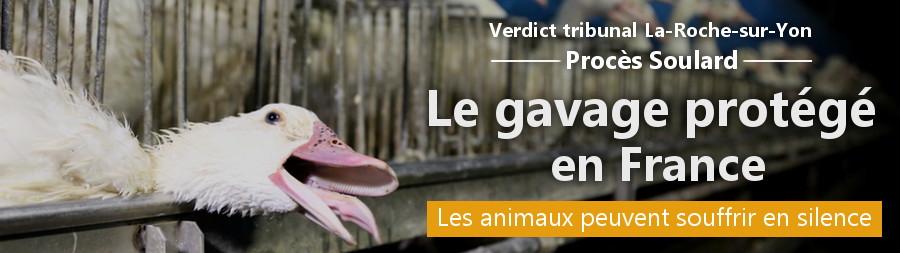 Bannière du verdict du procès du foie gras