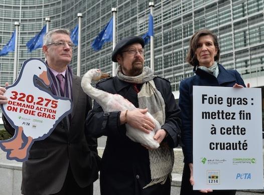 Photo des trois eurodéputés à Bruxelles